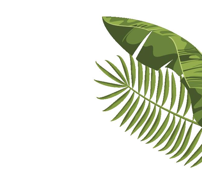 jungle leafs mybea